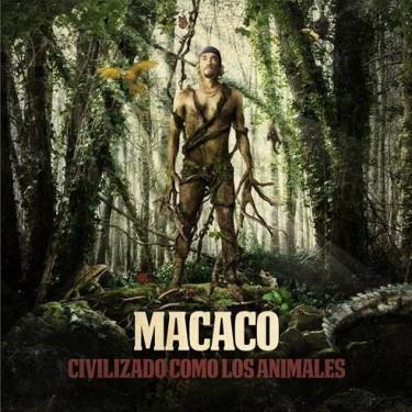 MACACO-PORTADA-CCLA